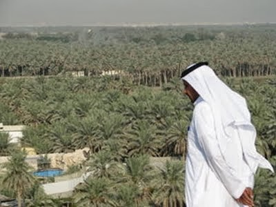 Arab Hijau dan Salju