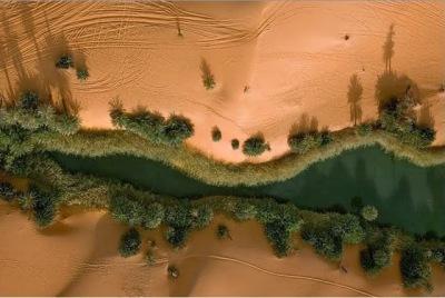 Gurun Sahara Menghijau